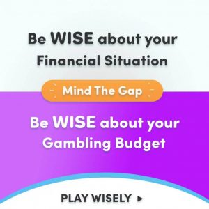 Play Wisely Banner